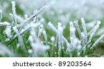 Frozen Green Grass
