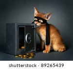 Stock photo abyssinian kittens age month 89265439