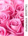 Beautiful Pink Roses Backgroun...