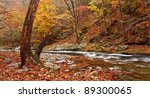 Little river , great smoky mountains national park. Autumn colors.