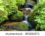 Mountain Stream Among The Moss...