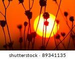 sunset landscape with sun over... | Shutterstock . vector #89341135