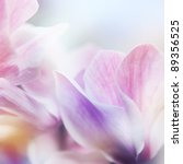 Stock photo beautiful flowers made with color filters 89356525