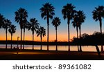 San Diego Sunset and Palm Trees at Mission Bay San Diego, California - stock photo