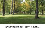 a park panorama   seasonal... | Shutterstock . vector #89445253