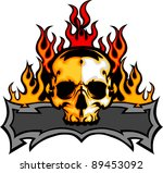 graphic skull  vector image...