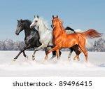 free three arabian horses in... | Shutterstock . vector #89496415