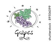 hand drawn grape in vignette | Shutterstock .eps vector #89506099