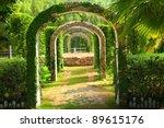 Pergola And Plant In A Garden ...