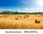 Beautiful Countryside Landscap...