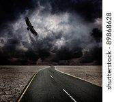 Storm Sky  Bird  Road In Desert