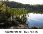rods on the water   Shutterstock . vector #89878645