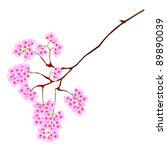 cherry blossoms | Shutterstock . vector #89890039