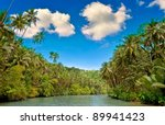 tropical river with palm trees... | Shutterstock . vector #89941423