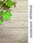 grapevine on wooden background | Shutterstock . vector #89950318