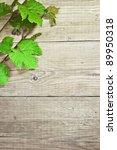 grapevine on wooden background   Shutterstock . vector #89950318