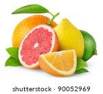 Isolated Citrus Fruits. Orange...
