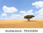 lonely acacia tree in desert on ... | Shutterstock . vector #90141856