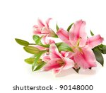 pink lilies ' bunch on a white... | Shutterstock . vector #90148000
