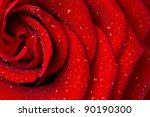 Stock photo red rose petals 90190300