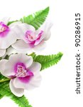 white with purple exotic orchid ... | Shutterstock . vector #90286915