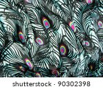 blue satin peacock feathers... | Shutterstock . vector #90302398