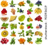 collection set of fresh juicy... | Shutterstock . vector #90393619