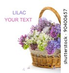 Lilacs In A Basket On A White...