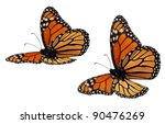 Stock photo monarch butterflies flying positions underside 90476269