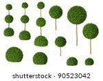 Set Of Boxwood Trees Isolated...