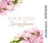 spring floral background   pink ... | Shutterstock . vector #90591835