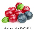 Cranberry with blueberry. Use it for a health and nutrition concept. - stock photo