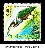 Small photo of CUBA - CIRCA 1989: A Stamp printed in CUBA shows image of a bird Agami Heron (agamia agami), circa 1989