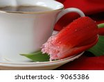 Macro still-life of elegant teacup filled with hot tea and red fringed tulip with red table linen in background.  Shallow dof with focus on water droplets on the tulip. - stock photo