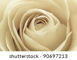 close up of white rose petals   Shutterstock . vector #90697213
