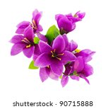 Stock photo purple fake flowers is isolated on a white top view 90715888