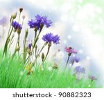 Abstract Background With Summer Flowers On A Field - stock photo