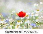 abundance of blooming wild... | Shutterstock . vector #90942341