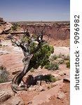 utah desert - stock photo