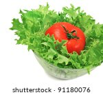 green salad and tomato isolated ... | Shutterstock . vector #91180076