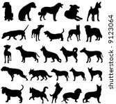 dog vector   Shutterstock .eps vector #9123064