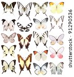 Stock photo very many white butterflies isolated on white background 91290536