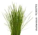 Grass Bunch Isolated On White...