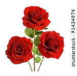 Stock photo bunch of velvet red roses isolated on white 91434974