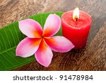 Tropical Plumeria And...