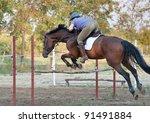 show jumping.girl riding horse... | Shutterstock . vector #91491884