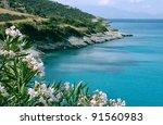 sea shore in greece with... | Shutterstock . vector #91560983