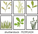 vector nature design | Shutterstock .eps vector #91591424