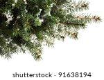 beautiful christmas tree... | Shutterstock . vector #91638194