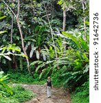 Young Women On A Jungle Trail...